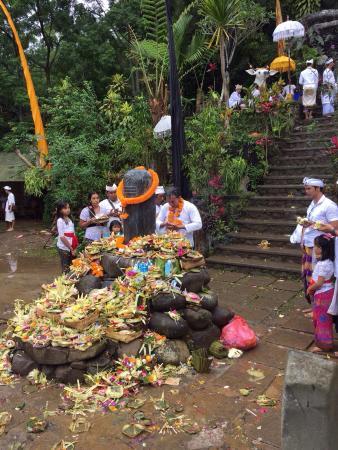 Pupuan, Indonezja: photo1.jpg