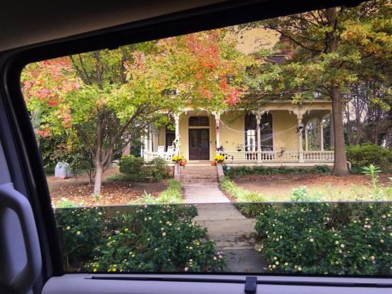 Historic Oakwood: Every House gets into the spirit of the spooky holiday
