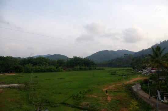 Periyar Meadows Leisure Hotel: The nice view from the room balcony