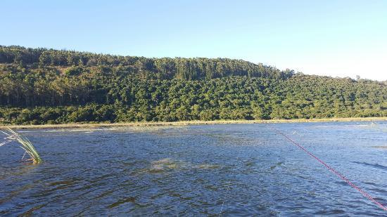 Lake Pleasant Chalets & Lodges: 20160204_180336_large.jpg