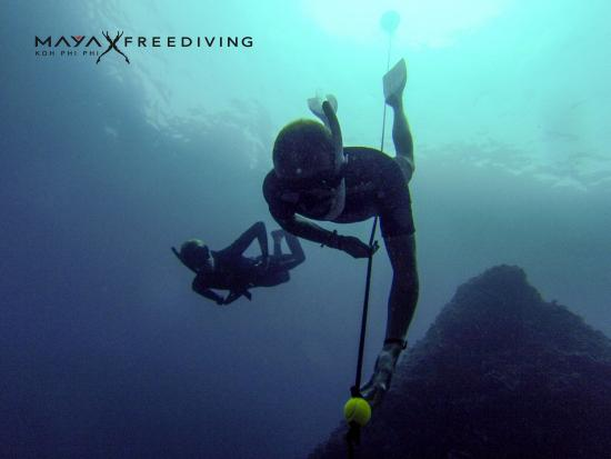 Maya Freediving