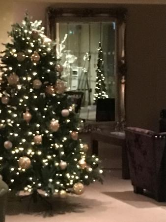 Stonedge, UK: Reception dressed for Christmas
