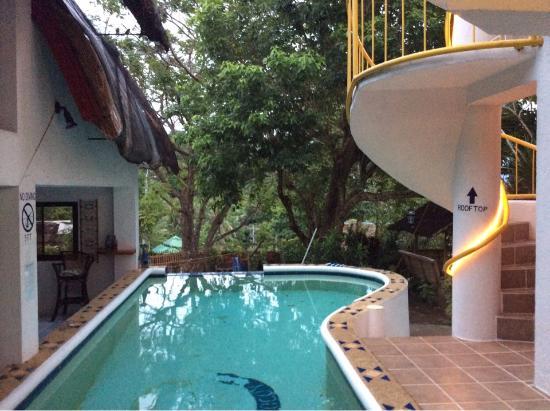 JAYJAYs Club: Бассейн и лестница на крышу