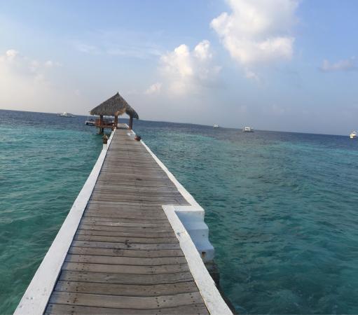 Eriyadu Island Resort: photo9.jpg