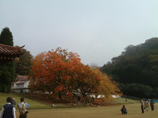Bizen, Jepang: 旧閑谷学校