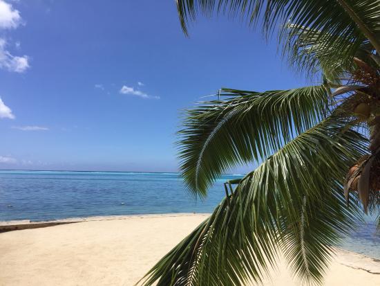 Haapiti, Polinezja Francuska: photo2.jpg
