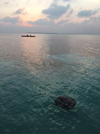 Dhonakulhi Island: Sun set in Meeru