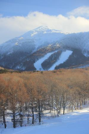 Ajigasawa-machi, Jepang: The resort is set on the spectacular Mt Iwake - view from Hotel room