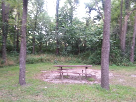 Indiana Beach & IB Crow Campground and RV Resort: Camp Site