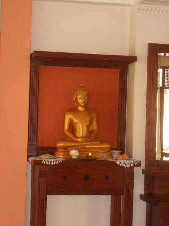 Aida Ayurveda & Holistic Health Resort: This fellow is in the reception