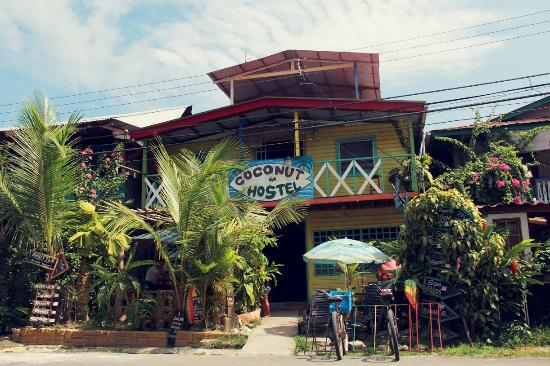 Coconut Hostal