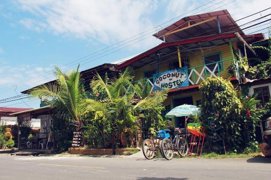 Coconut Hostel 사진