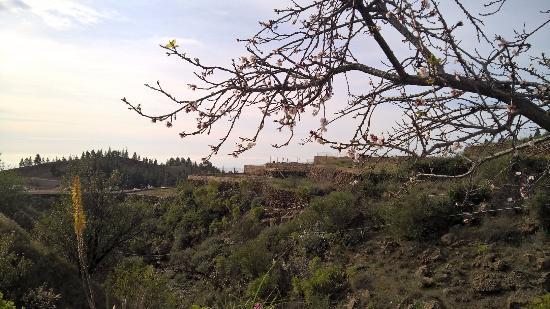 Vilaflor, Spanien: View to the west