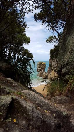 Abel Tasman National Park, Nieuw-Zeeland: View of Beach Rocks through Trees