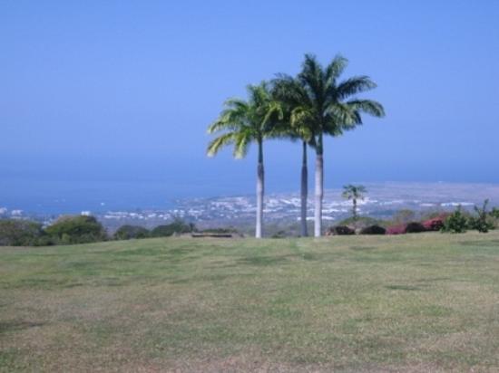 Holualoa, HI: ドトールコーヒー ハワイ農園からの景色