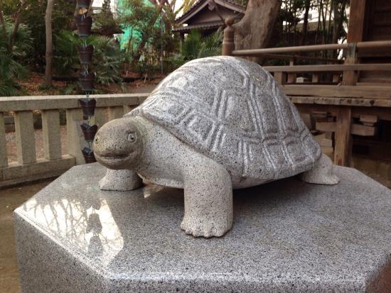 Zushi, ญี่ปุ่น: photo1.jpg