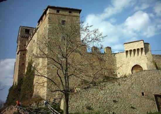 Pavullo Nel Frignano, Italia: castello di montecuccolo