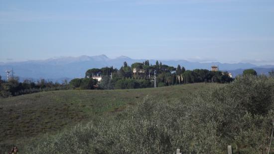 카스텔피오렌티노 사진