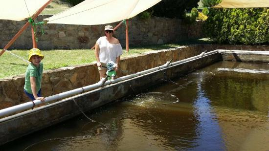 Cooma, Australia: Fishing