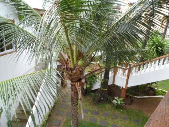 La Plage de Boracay Resort: Cour