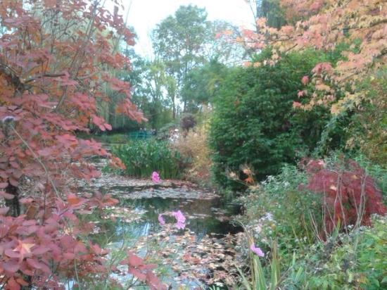 Claude Monet's House and Gardens: L'automne sur l'étang