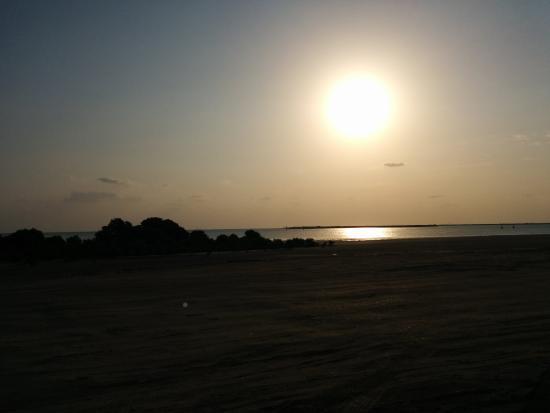 الخور, قطر: Beach view..