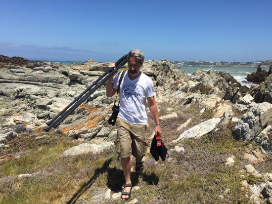 Gansbaai, Sudáfrica: Great White Shark Tours