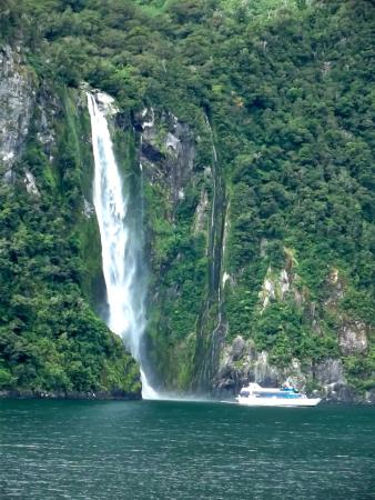 Fiordland National Park (Te Wahipounamu): Waterfall in Fiordland National Park
