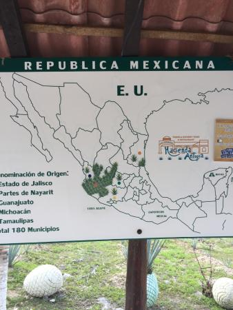 Map of tequila production Picture of Tequila Tour Cozumel HA