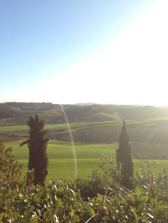 Castelnuovo Berardenga, Italien: Lugar hermoso !
