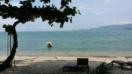 Lipa Noi, Thailand: Beachside.