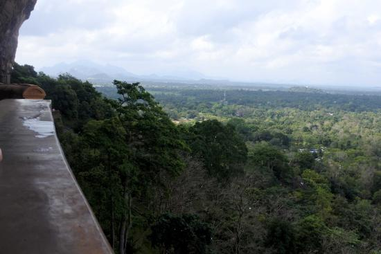 Citadel of Sigiriya - Lion Rock: смотрим вниз