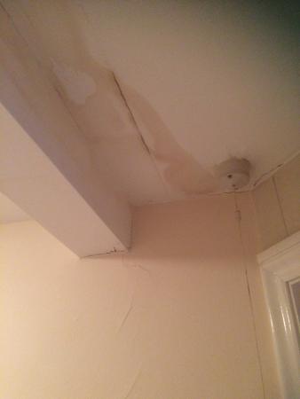 Monmouth, UK: Bathroom ceiling
