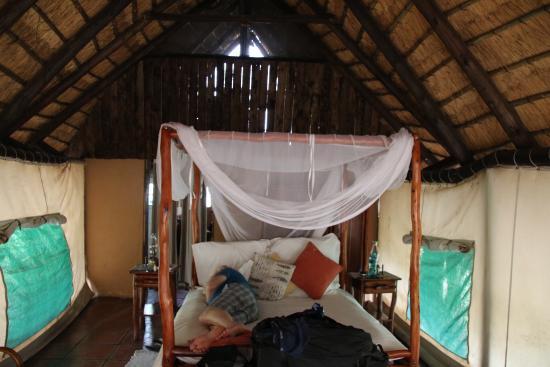 Manyeleti Game Reserve, جنوب أفريقيا: Pungwe Bush Camp