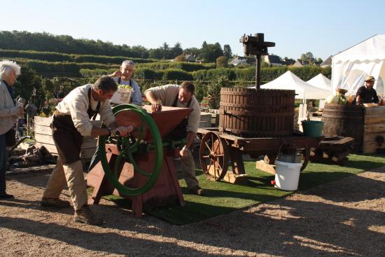 Villandry, Francia: Produzione vino di mele