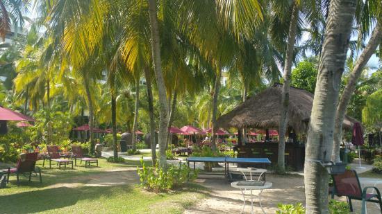 PARKROYAL Penang Resort, Malaysia: Pretty gardens