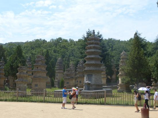Dengfeng, Kina: bosque pagodas 02