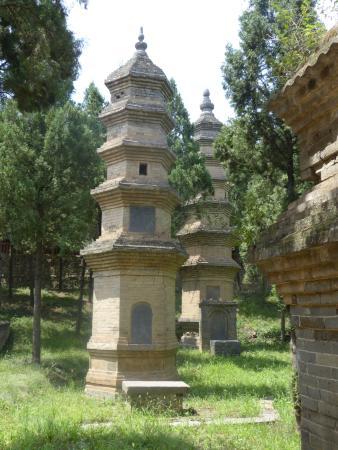 Dengfeng, จีน: bosque pagodas 01