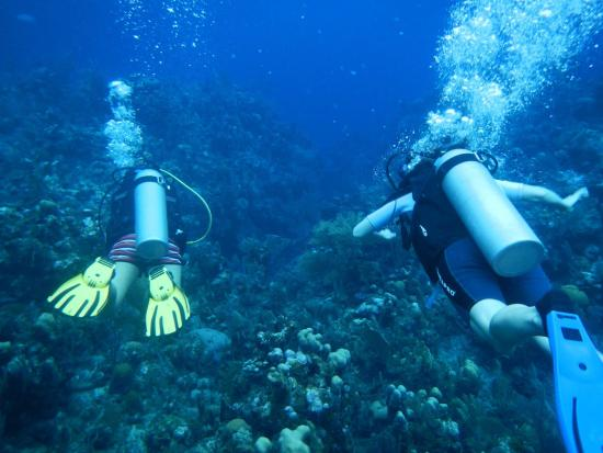 West End, Honduras: Diving with our awesome instructor