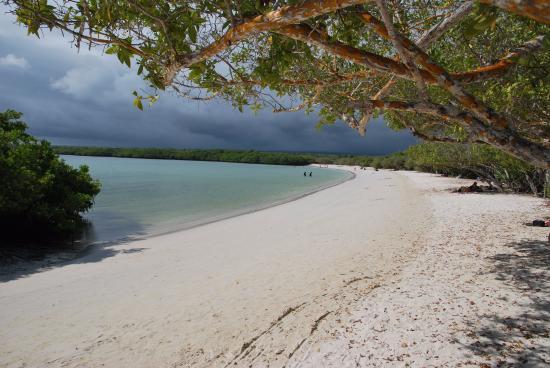Villa Laguna: plage à une heure