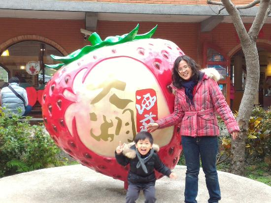 Dahu Strawberry Cultural Center