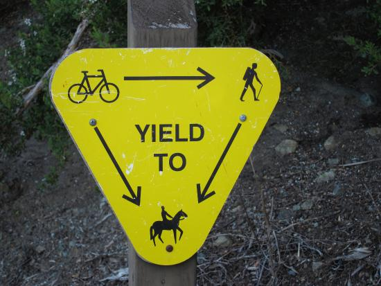"San Mateo, CA: ""Rules of the road"", although I've never seen a horse..."