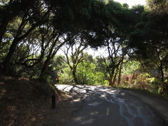 San Mateo, Californië: A nice mix of shade and sun all along the trail
