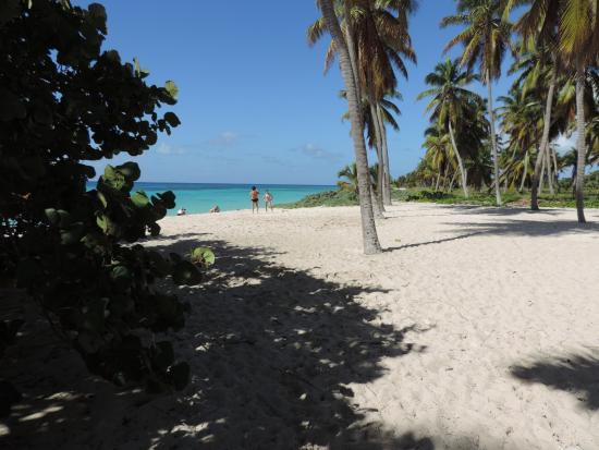 Bayahibe, Δομινικανή Δημοκρατία: Canto de la Playa