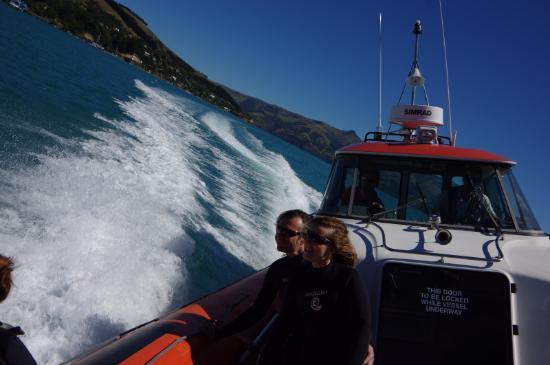 Akaroa, Nueva Zelanda: Etwas Fun gehört auch dazu. (c) www.hans-klueche.de