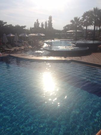 Minoa Palace Resort & Spa Foto
