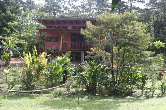 Bijagua de Upala, Costa Rica: Casita Volcan - our room for 2 nights