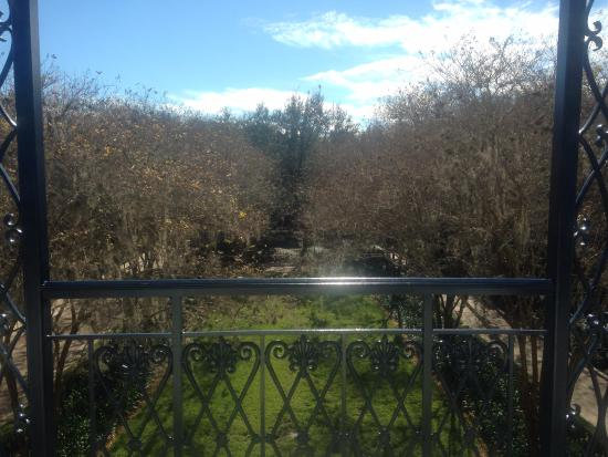 garden view in january picture of disney s port orleans resort rh tripadvisor co za