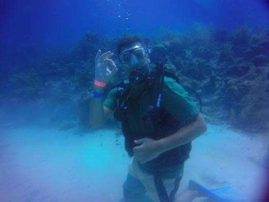 Buceo Caribe Azul: Ver los corales y peces esta de más!!!!!!