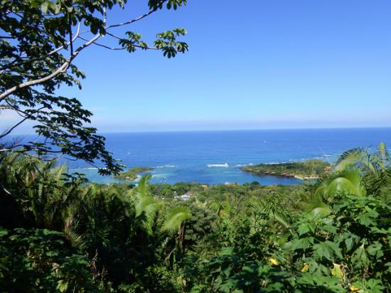 Sandy Bay, ฮอนดูรัส: The view Carambola